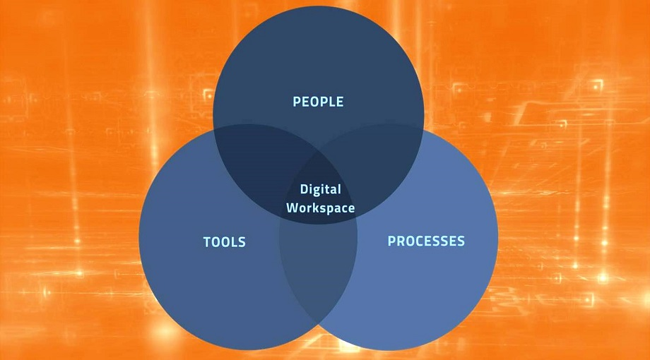 Digital Workspaces for Not for Profit Organisations